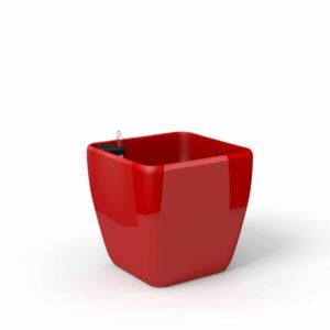Quadra 3114 czerwona